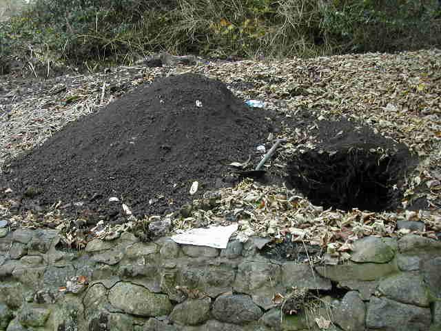Excavation in progress